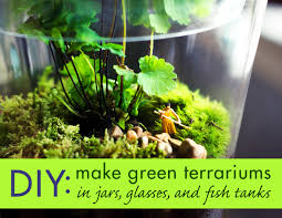 how to create amazing terrariums that u0027ll green up your space year