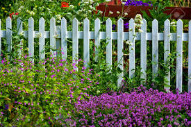 a fence in a beautiful garden stock photo picture and royalty