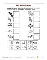 five sense worksheet new 755 worksheets on five senses for grade 3