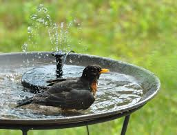 colorful bird baths for the sleek patio design spring bird com