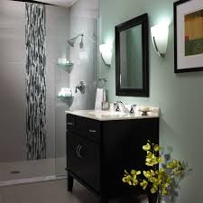 Bathroom Renovation Checklist by Transitional Bathroom Renovation Speakman Company