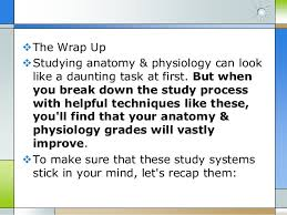Anatomy And Physiology Pick Up Lines 10 Anatomy And Physiology Tips To Get Better Grades