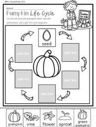 for pumpkin investigation pumpkins