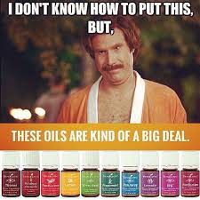 Meme Young - young living essential oils funny meme if you are not yet a member
