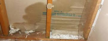 How Long Does Wet Carpet Take To Dry Drying Drywall After Water Damage 5 Effective Diy Steps