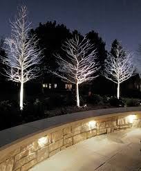 modern lighting in the garden transformed the outdoor area