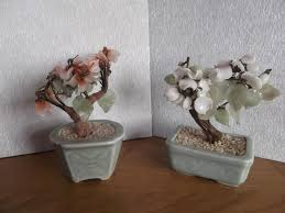 bonsai tree local classifieds for sale in the uk and ireland