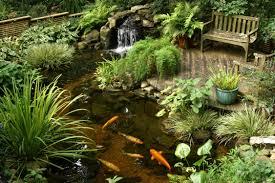 beautiful garden pond ideas orchidlagoon com