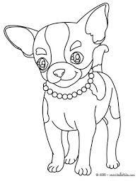 chihuahua coloring pages hellokids