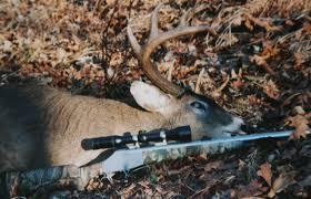 april 2010 backyard deer hunting