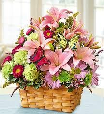 Amazing Flower Arrangements - make amazing flower arrangements for your special person
