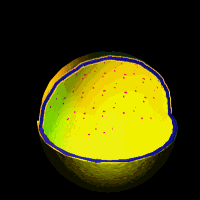the virtual cell textbook cell biology