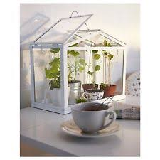 ikea fro indoor outdoor mini greenhouse terrarium seed starter