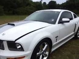 Black Mustang Grey Stripes Sold 2007 Shelby Gt Mustang Coupe White Grey Stripe Automatic