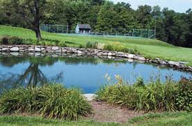 Pond Landscaping Ideas Garden Design Garden Design With Types Pond Landscaping With
