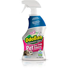 Upholstery Cleaner Rental Home Depot Odoban 32 Oz Pet Oxy Stain Remover 961561 Q The Home Depot