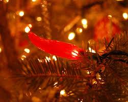 Chili Lights Take The Side Street Oh Christmas Tree