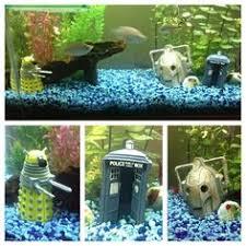 goldfish names 3 of 6 aquarium fish fancy goldfish