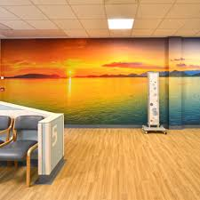 case study acrovyn wall protection at bristol royal infirmary hospital wall mural for royal bournemouth hospital