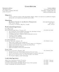 canadian high student resume exles professional chronological resume exle high teaching