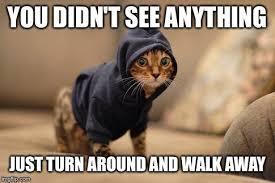 Walk Away Meme - you didn t see anything just turn around and walk away meme