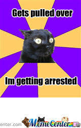 Anxiety Cat Memes - anxiety cat by madlolhatter meme center
