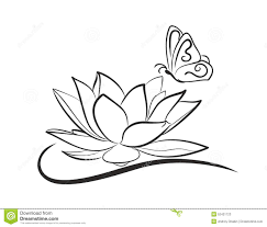 water lotus with a butterfly stock vector illustration of plant