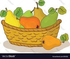 fruit basket fruit basket royalty free vector image vectorstock