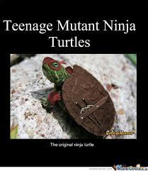 Ninja Turtles Meme - teenage mutant ninja turtles by jigsaw1550 meme center