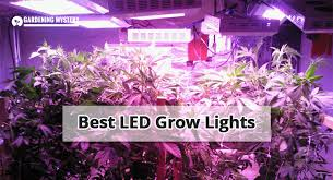 what are the best led grow lights for weed best led grow lights 2018 review buying guide and more update