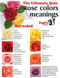 what do the colors mean national rose month what do the various colors mean quiz answers