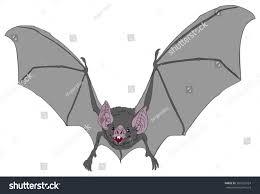 detailed vector illustration vampire bat flying stock vector