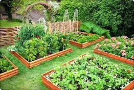 Fruit And Vegetable Garden Layout Raised Bed Vegetable Garden Design Large Size Of Garden Bed