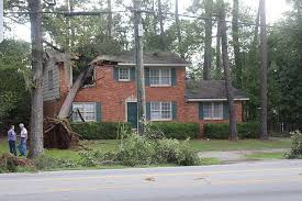 kingston unable to repair home due to downed tree s heritage