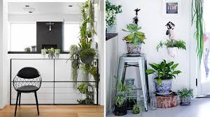 11 mini indoor garden ideas