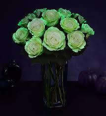 a flower blog about flowers plants u0026 gifting 1800flowers petal talk