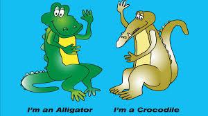 i u0027m an alligator i u0027m a crocodile by shawn persinger u0026 tom shultz