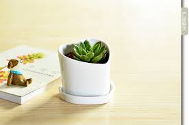 compare prices on modern plant pots online shopping buy low price