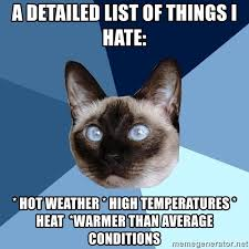 Hot Weather Meme - i hate hot weather memes 4iam