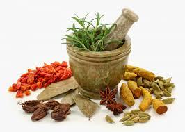 cuisine ayurv ique d inition ayurveda kerala