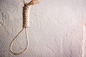 how to tie a noose 10 steps with pictures wikihow