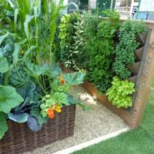 68 best small garden images on pinterest small gardens front