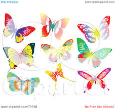 butterfly clipart nine pencil and in color butterfly clipart nine