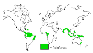 south america map rainforest tropical forest biome