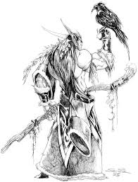totally accurate drawing of me druid pinterest night elf