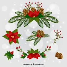 Christmas Flowers Christmas Flowers Pictures Free Bbcpersian7 Collections