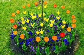 imagenes de jardines pequeños con flores jardin con flores coloridas patios y jardines