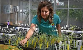 native plants and wildlife gardens featured stories pacific southwest region