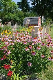 Summer Flower Garden Ideas - 28 best flower bed ideas images on pinterest flower gardening