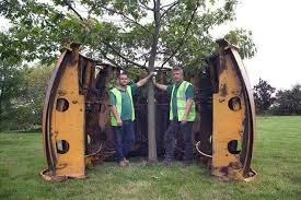 tree moving any size tree hedge or shrub moved ruskins trees